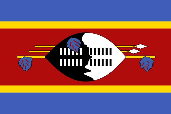 Minecraft Servers in Swaziland