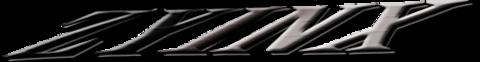 Zyinx Over 30 Worlds