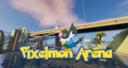 Pixelmon Arena