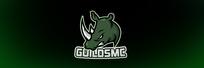 GuildsMC