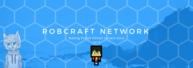 RobCraftNet